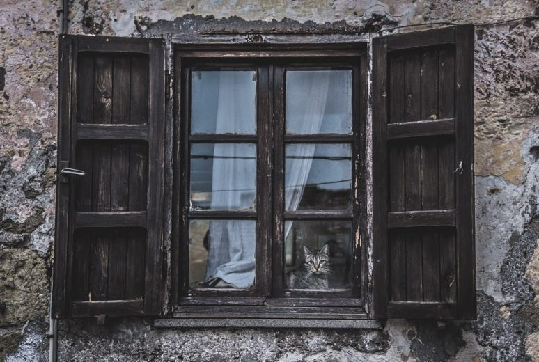 What Should You Keep in Mind during the Old Windows Replacement